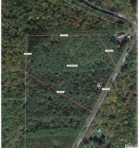 0 Butternut Brook Road, Genesee, NY 14770 (MLS #R1364106) :: Serota Real Estate LLC
