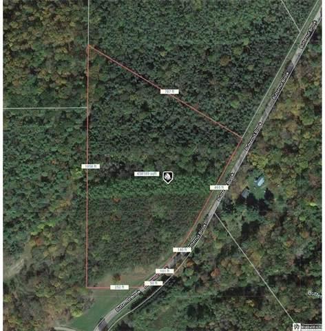 0 Butternut Brook Road, Genesee, NY 14770 (MLS #R1364110) :: BridgeView Real Estate