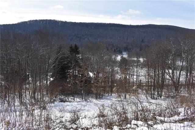 1694 Chapman Dam Road, Clarendon Borough, PA 16313 (MLS #R1364786) :: BridgeView Real Estate