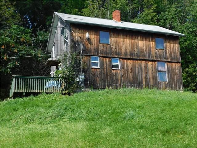 2203 German Hill Road, Greenwood, NY 14877 (MLS #R1365157) :: BridgeView Real Estate
