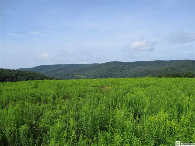 2776 State Route 305, Clarksville, NY 14715 (MLS #R1365341) :: BridgeView Real Estate