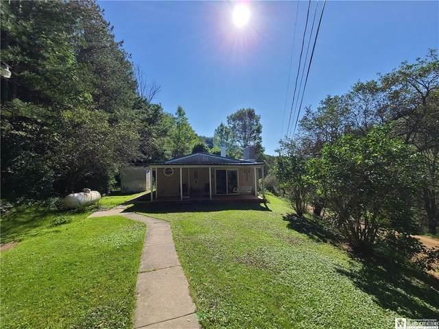 9341 Nouvoo Road, Genesee, NY 14770 (MLS #R1365576) :: Serota Real Estate LLC