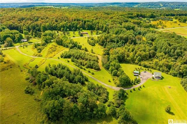9398 Reagan Road, French Creek, NY 14724 (MLS #R1365782) :: BridgeView Real Estate