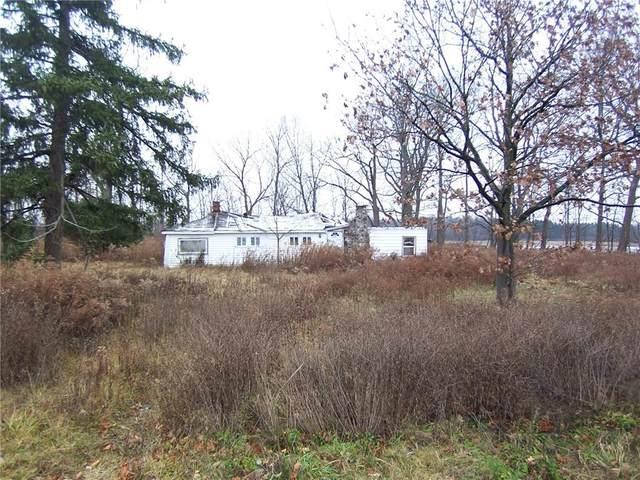 9278 Warsaw Road, Leroy, NY 14482 (MLS #R1366681) :: BridgeView Real Estate