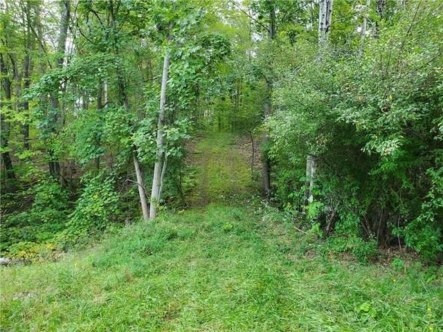Parcel 2 Gannett Hill Road W, South Bristol, NY 14512 (MLS #R1367900) :: BridgeView Real Estate