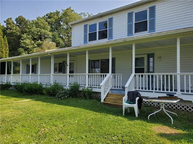 5404 State Route 414, Hector, NY 14841 (MLS #R1368463) :: MyTown Realty