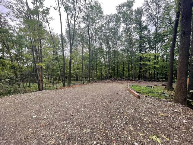 0 Mccurdy Road, Ossian, NY 14437 (MLS #R1368472) :: Robert PiazzaPalotto Sold Team