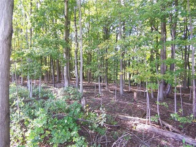 0 South Lake Road, Pembroke, NY 14036 (MLS #R1369716) :: Serota Real Estate LLC