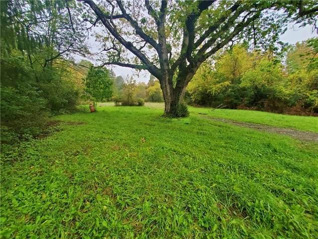 9525 County Route 97, Wayne, NY 14893 (MLS #R1370819) :: Serota Real Estate LLC