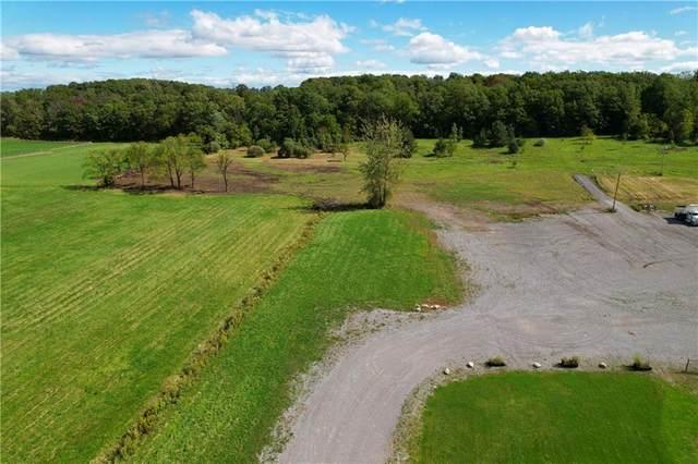 2557 Cannan Road, East Bloomfield, NY 14469 (MLS #R1372101) :: Serota Real Estate LLC
