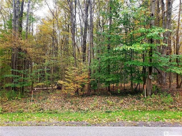 00 Beck Road, Ellery, NY 14701 (MLS #R1373083) :: TLC Real Estate LLC