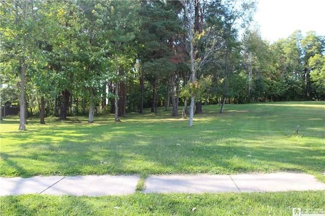 0 Ryan Place, Pomfret, NY 14063 (MLS #R1373126) :: TLC Real Estate LLC