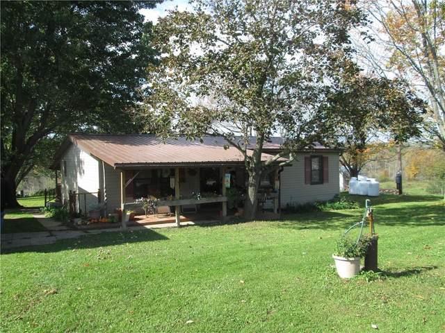 8656 Carney Hollow Road, Springwater, NY 14572 (MLS #R1373939) :: Serota Real Estate LLC