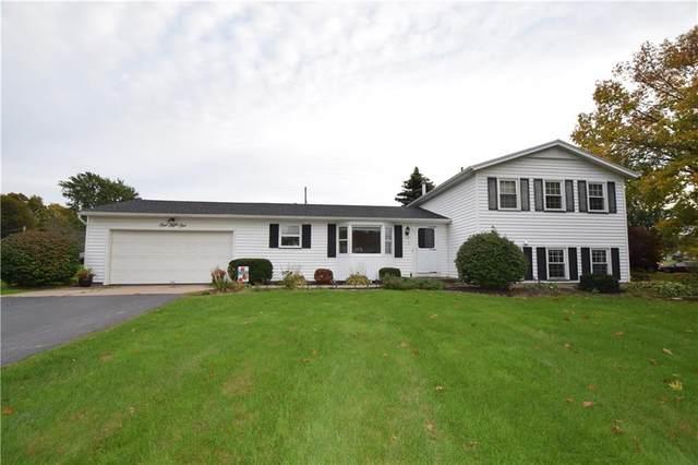 151 Jackie Drive, Greece, NY 14612 (MLS #R1375015) :: Serota Real Estate LLC