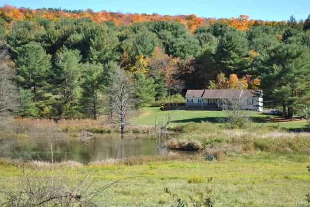 166 Howe Road, Berkshire, NY 13736 (MLS #S1009513) :: Thousand Islands Realty