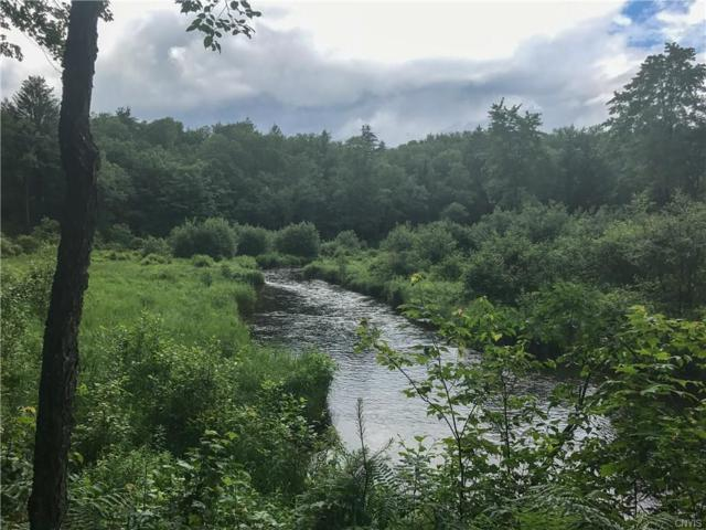 00 Cappy Rd Road, Greig, NY 13345 (MLS #S1057933) :: BridgeView Real Estate Services