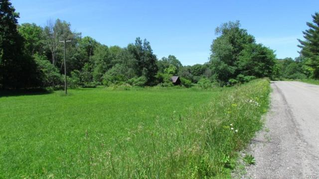 921 Babcock Hollow Road, Harford, NY 13784 (MLS #S1058279) :: BridgeView Real Estate Services