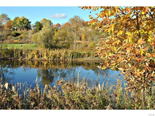 7001 Hunters Crossing, Fabius, NY 13063 (MLS #S1061448) :: Thousand Islands Realty