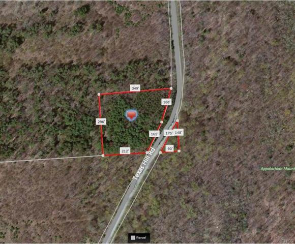 0 Texas Hill Road, Georgetown, NY 13332 (MLS #S1065707) :: The Chip Hodgkins Team