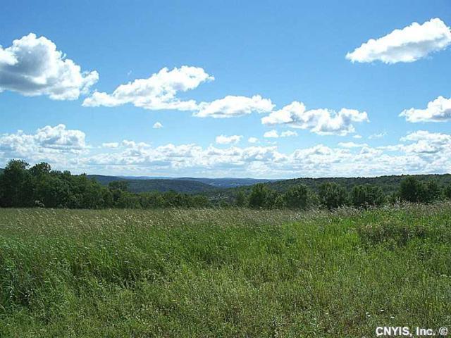 00 Highland Acres, Bainbridge, NY 13733 (MLS #S1066127) :: Thousand Islands Realty