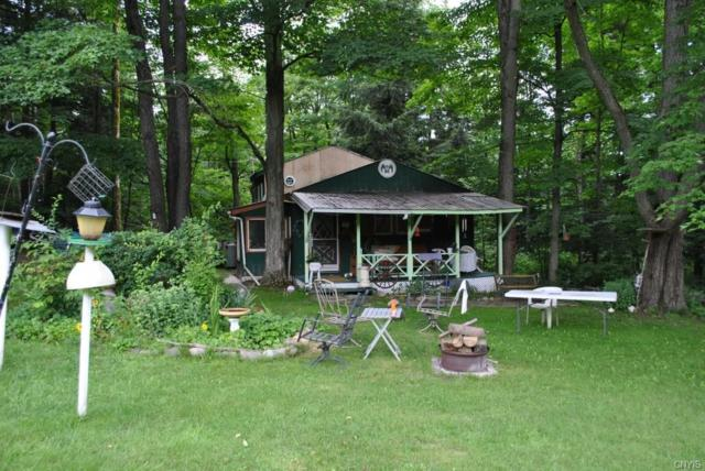 451 Killawog Hill Road, Lisle, NY 13803 (MLS #S1070078) :: The Rich McCarron Team