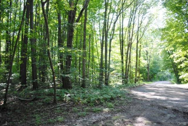 0 Cove Road, Sandy Creek, NY 13145 (MLS #S1070260) :: BridgeView Real Estate Services
