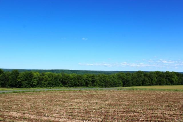 W. side Whiskey Lane Road, Turin, NY 13473 (MLS #S1070590) :: BridgeView Real Estate Services