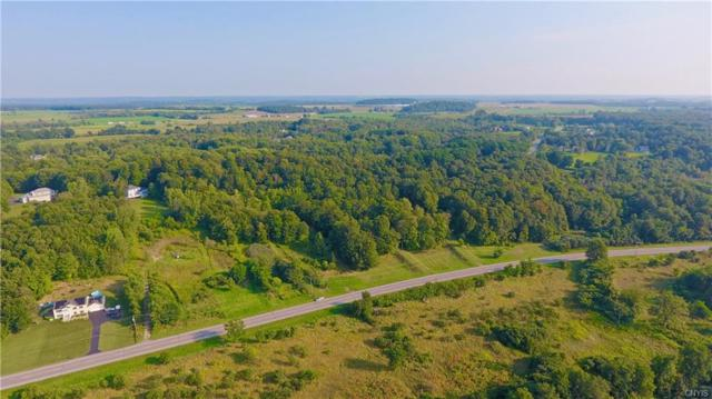 16236 Us Route 11, Watertown-Town, NY 13601 (MLS #S1070897) :: BridgeView Real Estate Services