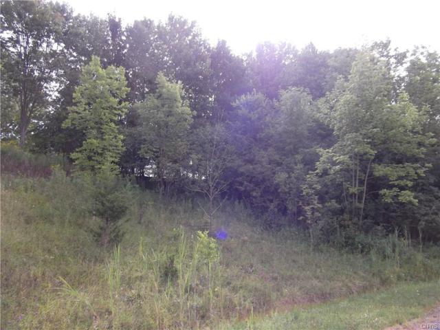 4650 N Street Road, Marcellus, NY 13108 (MLS #S1072393) :: Thousand Islands Realty