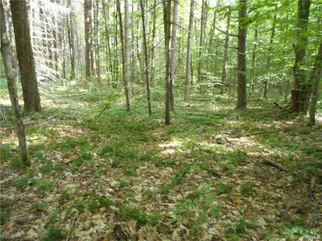 00 Hawkinsville Road, Forestport, NY 13494 (MLS #S1077013) :: Thousand Islands Realty