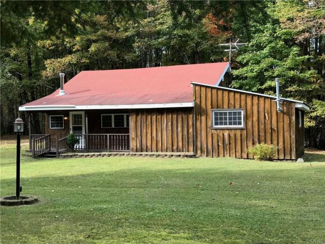 10247 Dustin Road, Remsen, NY 13438 (MLS #S1077443) :: Thousand Islands Realty