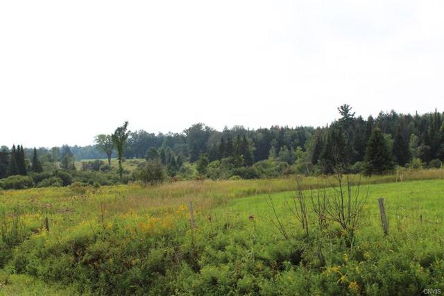 Lot 1 Dorn Road, Boonville, NY 13309 (MLS #S1078246) :: Thousand Islands Realty