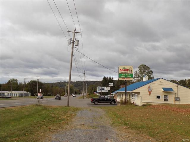 1159 State Hwy 12, Greene, NY 13778 (MLS #S1080760) :: MyTown Realty