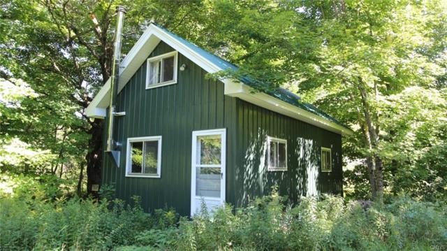 0 Salmon River Road, Montague, NY 13367 (MLS #S1082930) :: Thousand Islands Realty