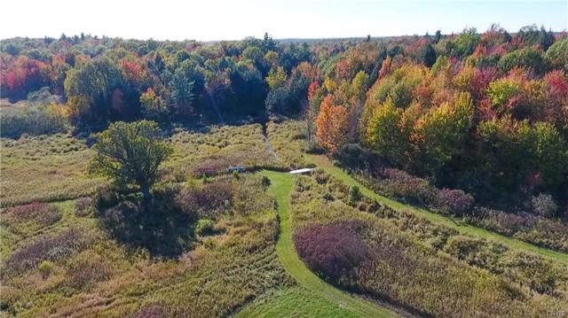 636 County Route 20, Hermon, NY 13681 (MLS #S1085397) :: Thousand Islands Realty
