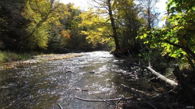 00 State Hwy 220, Smithville, NY 13605 (MLS #S1085648) :: Thousand Islands Realty