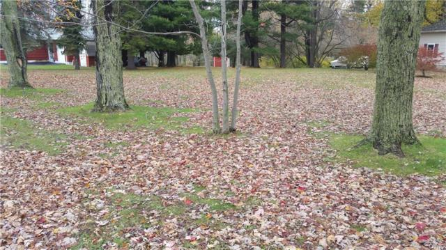 401 Dodge Avenue, Hounsfield, NY 13685 (MLS #S1085915) :: BridgeView Real Estate Services