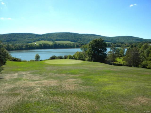 Lot 6 Lake Road, Dryden, NY 13053 (MLS #S1086051) :: Thousand Islands Realty