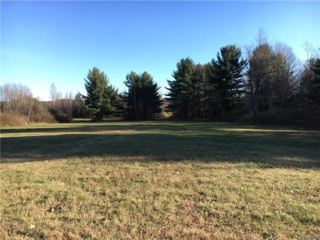 0 Fish Pond Rd, Clayton, NY 13624 (MLS #S1087794) :: BridgeView Real Estate Services