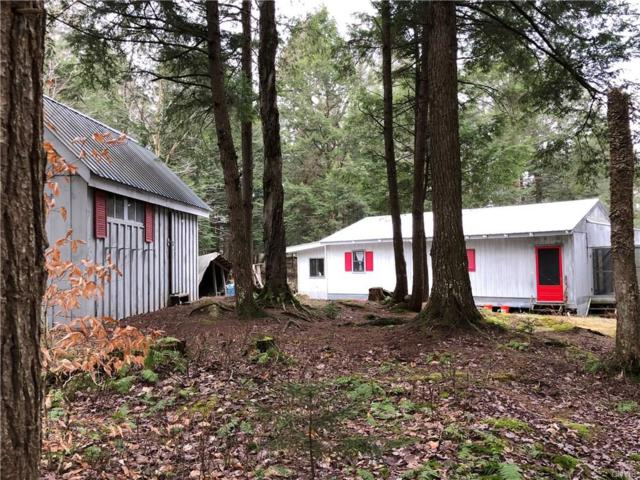 3148 Mohawk Drive S, Forestport, NY 13338 (MLS #S1089233) :: The Rich McCarron Team