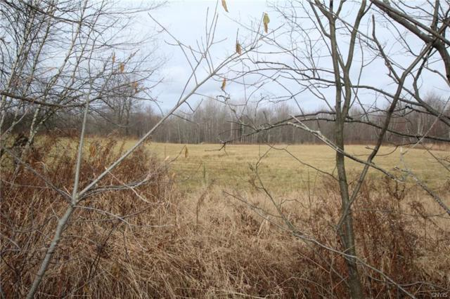 0 Strickland Road, Wilna, NY 13619 (MLS #S1089399) :: BridgeView Real Estate Services