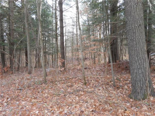 00 Partridgeville Road, Greig, NY 13345 (MLS #S1090309) :: Thousand Islands Realty