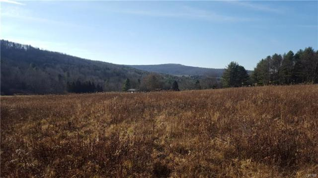 0 County Highway 8, Butternuts, NY 13776 (MLS #S1090807) :: Thousand Islands Realty