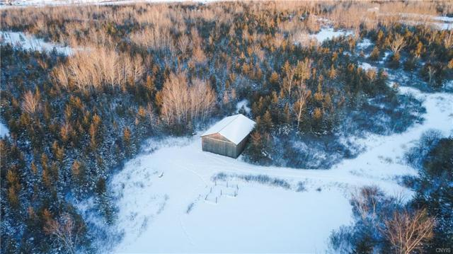 17031 Hart Road, Clayton, NY 13656 (MLS #S1092317) :: Thousand Islands Realty