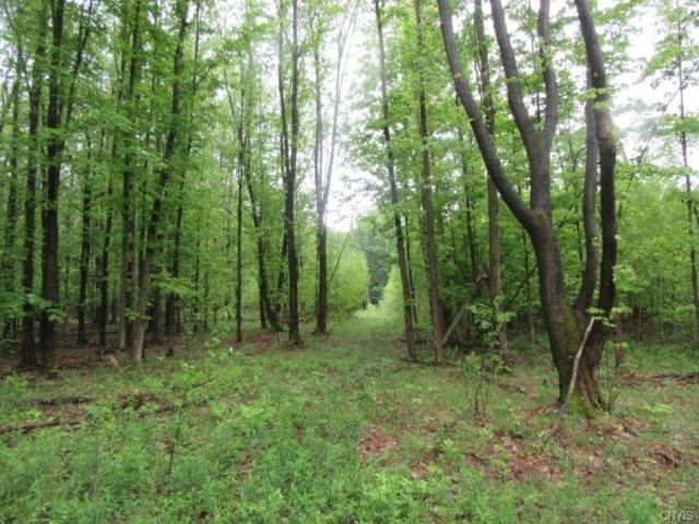 00 State Route 3, Palermo, NY 13036 (MLS #S1092979) :: Thousand Islands Realty