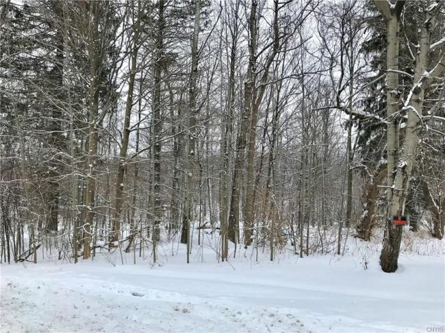0 State Route 104, Sterling, NY 13111 (MLS #S1093697) :: The Rich McCarron Team