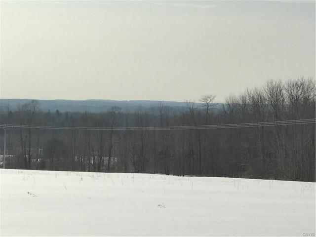 3080 County Route 22 Road, Orwell, NY 13144 (MLS #S1093907) :: The Chip Hodgkins Team