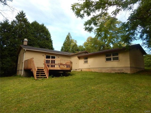 16224 Irwin Road, Sterling, NY 13126 (MLS #S1094019) :: The Rich McCarron Team