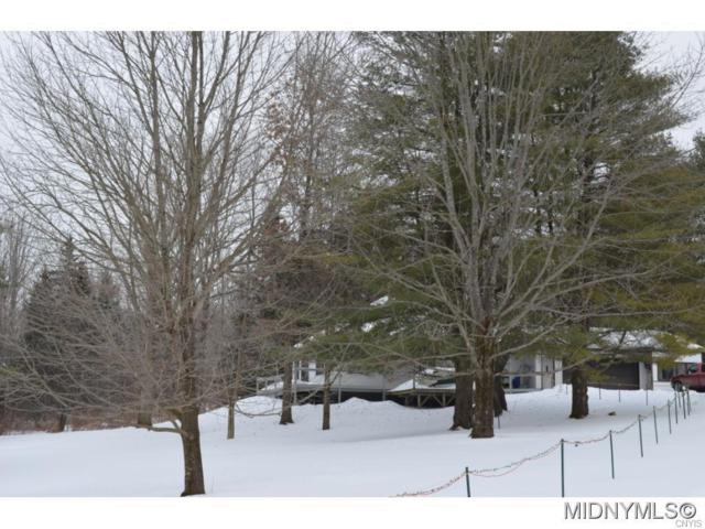 9390 Prospect Road, Remsen, NY 13438 (MLS #S1096379) :: Thousand Islands Realty