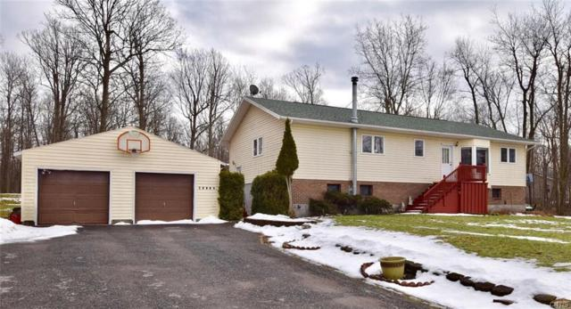 29752 County Route 179, Lyme, NY 13622 (MLS #S1096517) :: Thousand Islands Realty